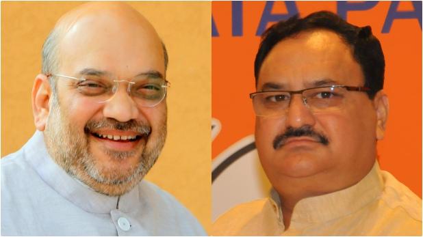 जेपी नड्डा, जेपी नड्डा को मोदी-शाह ने क्यों बनाया BJP का कार्यकारी अध्यक्ष, जानिए