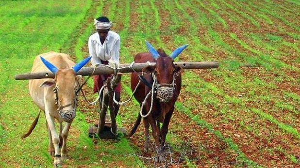 कर्ज माफी, कर्नाटक: 13,000 से ज्यादा किसानों के खातों से गायब हुई कर्ज माफी की रकम