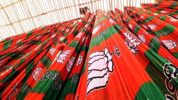 BJP, BJP FLAG