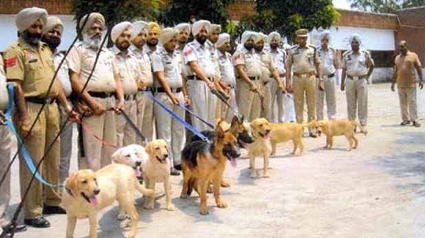 bihar, bihar police, bihar police dogs, luxury car, dog squad