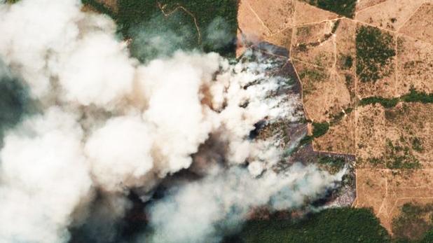 अमेजन, अगर चीन और हॉन्ग-कॉन्ग बीफ खाना बंद कर दें तो नहीं लगेगी अमेजन के जंगलों में आग!