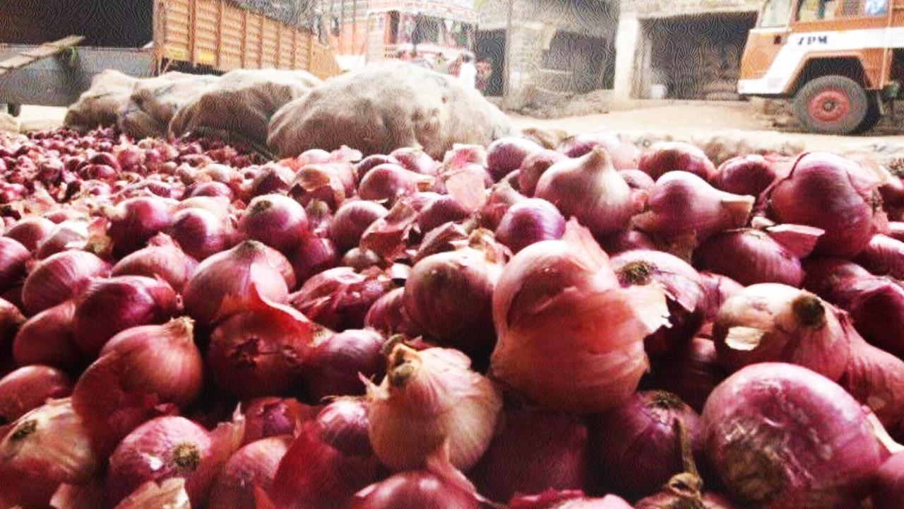 onion rot in warehouse, गोदामों में सड़ गया 19 हजार टन प्याज, AAP ने की CBI जांच की मांग