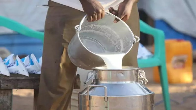 Amul, मदर डेयरी के बाद अब इस दूध ब्रांड ने बढ़ाया दाम, प्रति लीटर 2 रुपए  महंगा हुआ | After Amul and Mother Dairy Gokul milk get costlier by 2 rupees  | TV9 Bharatvarsh